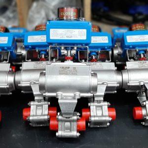 Series 84 SS_Pulp Mill- Methanol Tank APPLICATION